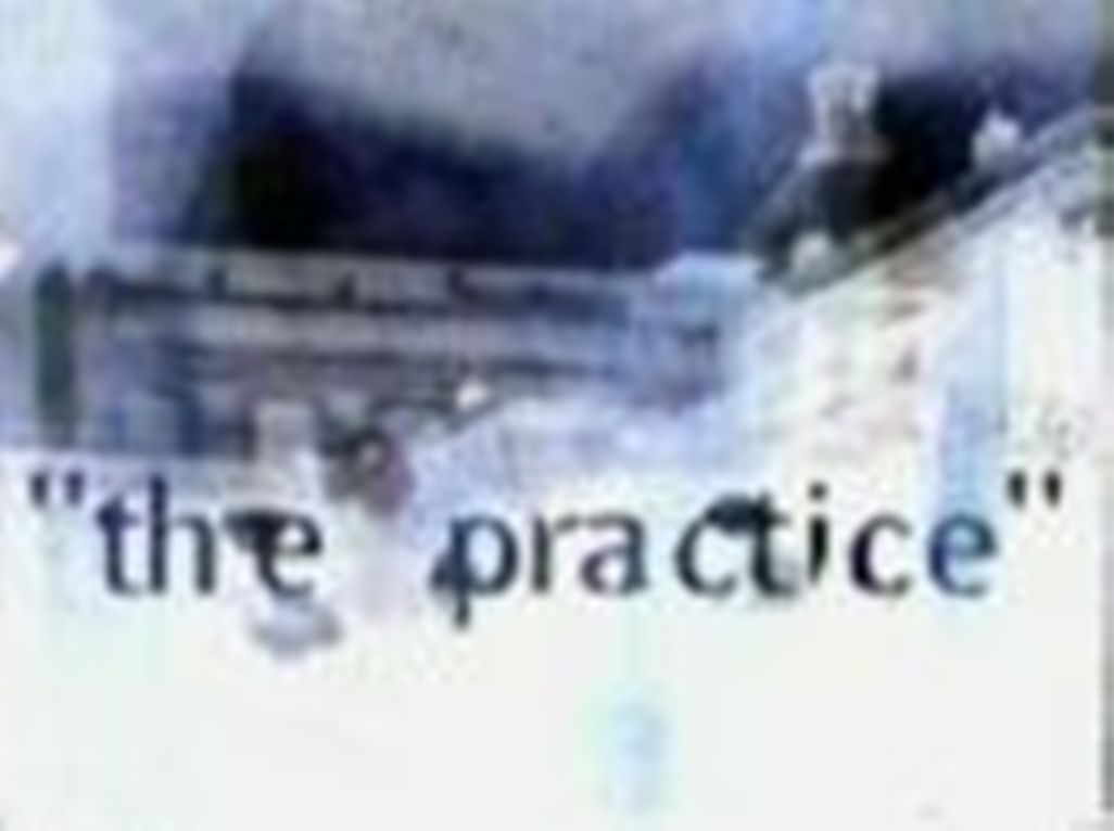 "David E.Kelley's ""the practice"""