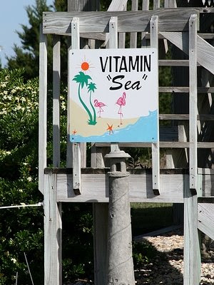 beach house name vitamin sea