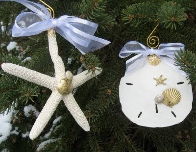 decorated sea shell ornaments