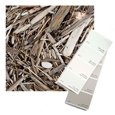 driftwood color palette inspiration