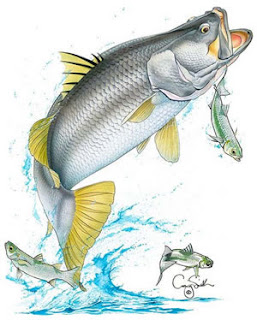Images Cartoon Mancing | Search Results | Calendar 2015