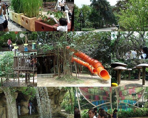 Places To Go In Singapore Jacob Ballas Children S Garden Botanic Gardens