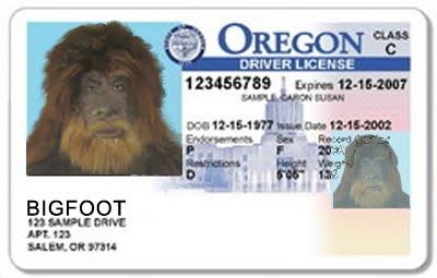 oregon drivers license suspension check