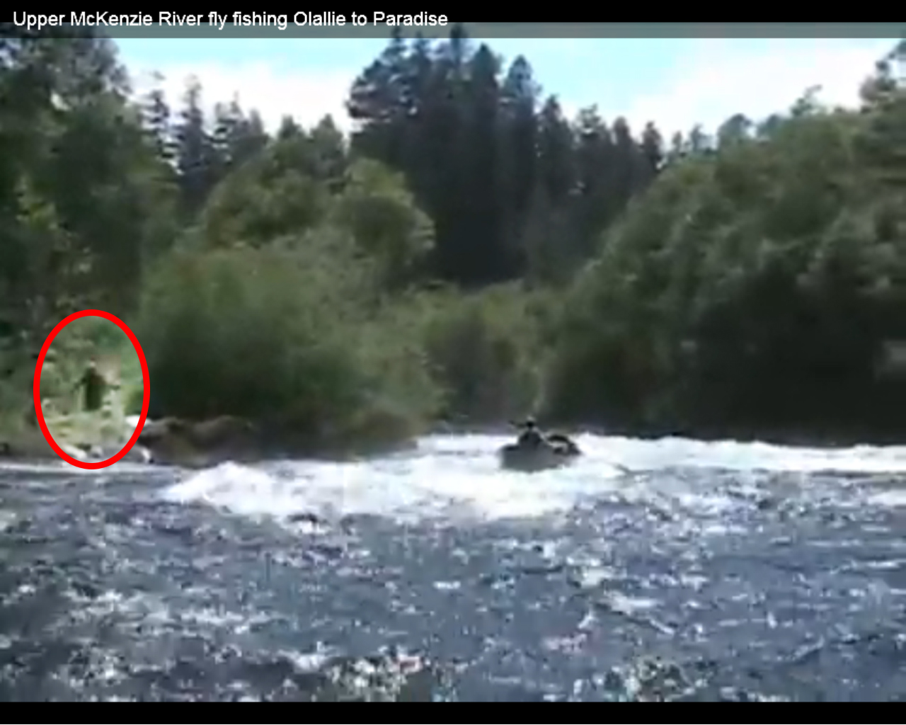 Bigfoot Video from 2008 McKenzie Fishing Trip Surfaces