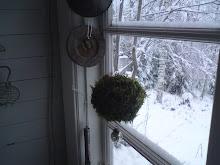 I fönstert