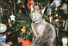 Sophie at the Tree