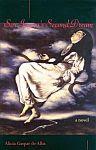 A color photo of the front cover of 'Sor Juana's Second Dream' by Alicia Gaspar de Alba.