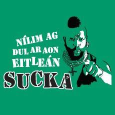 Mr T as Gaeilge