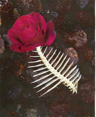 Poesía visual: La vida en rosa