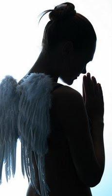 anjo,oração,orando,angel