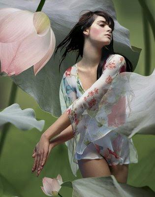ser humano,definição,mulher,rosas