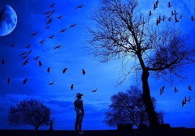 homem pensativo,lua,estrelas,natureza,paisagem,noite