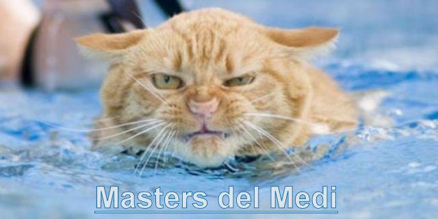 Masters del Medi