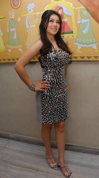 hansika motwani xclusive actress pics