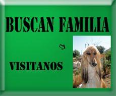 BUSCAN FAMILIA