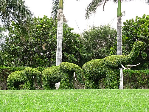 Picture Of Garden do you offer variety of garden sculptures at your store
