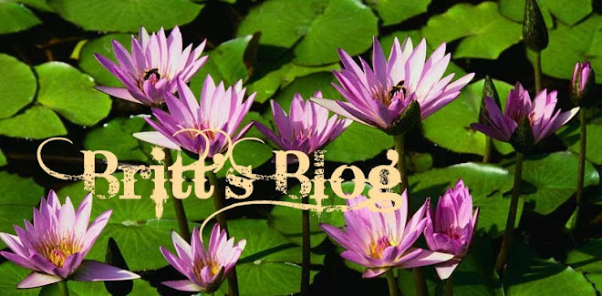 Britt's Blog