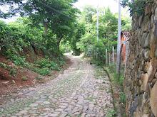 Camino al Lago Suchitlán