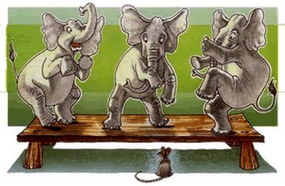 elefantes temen a los ratones