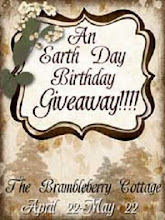 MY 2010 BIRTHDAY GIVEAWAY