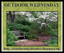 Celebrating the Great Outdoors on Wednesdays