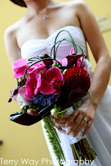 Monarch Cove Wedding Photographer Terry Way