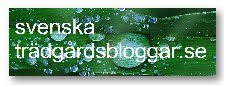 Svenska trdgrdsbloggar