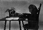 One Monkey Blogging