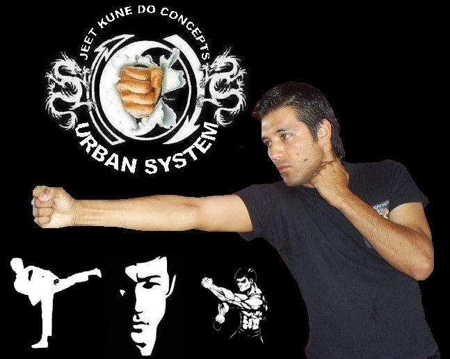 JEET KUNE DO CONCEPTS