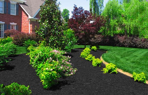 carlyklock: DIY Landscaping: The Plan
