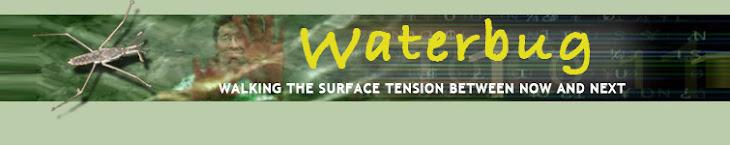 Waterbug