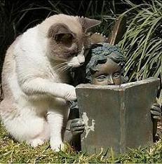 Perai, não vira a página!!!