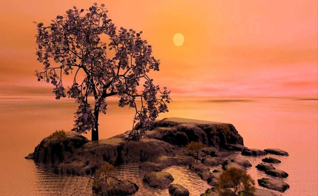 Cea mai frumoasa parabola despre iubire – ARBORELE CARE DARUIESTE – de Shel Silverstein