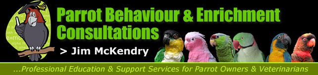 Parrot Behaviour &amp; Enrichment Consultations