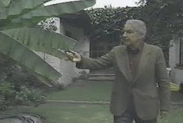DESCARGAR VIDEO: Álvaro Mutis - Palabra Mayor (1991)