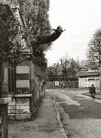 Encontros do acaso: Yves Klein