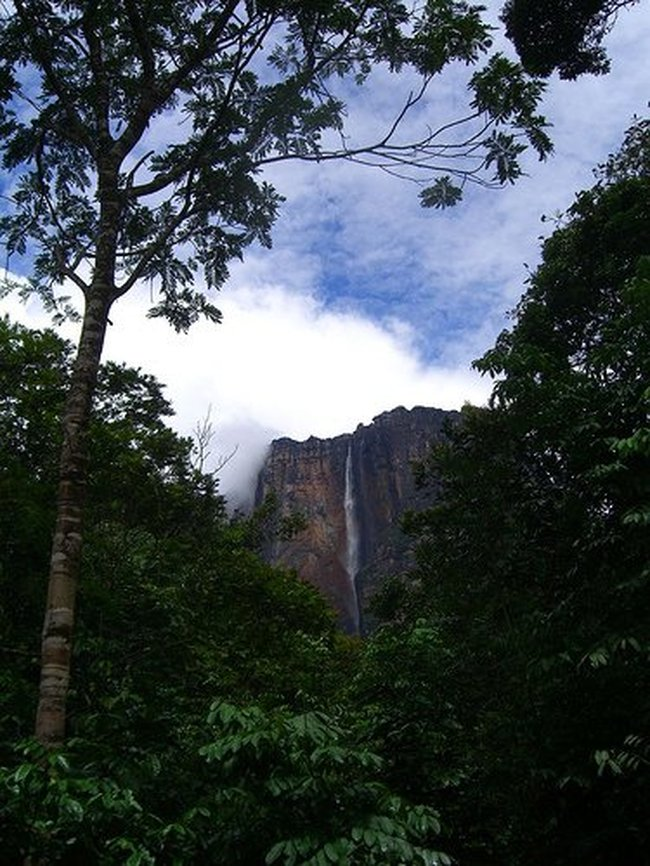 Beauty of Angel Falls