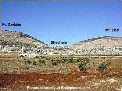 Shechem means