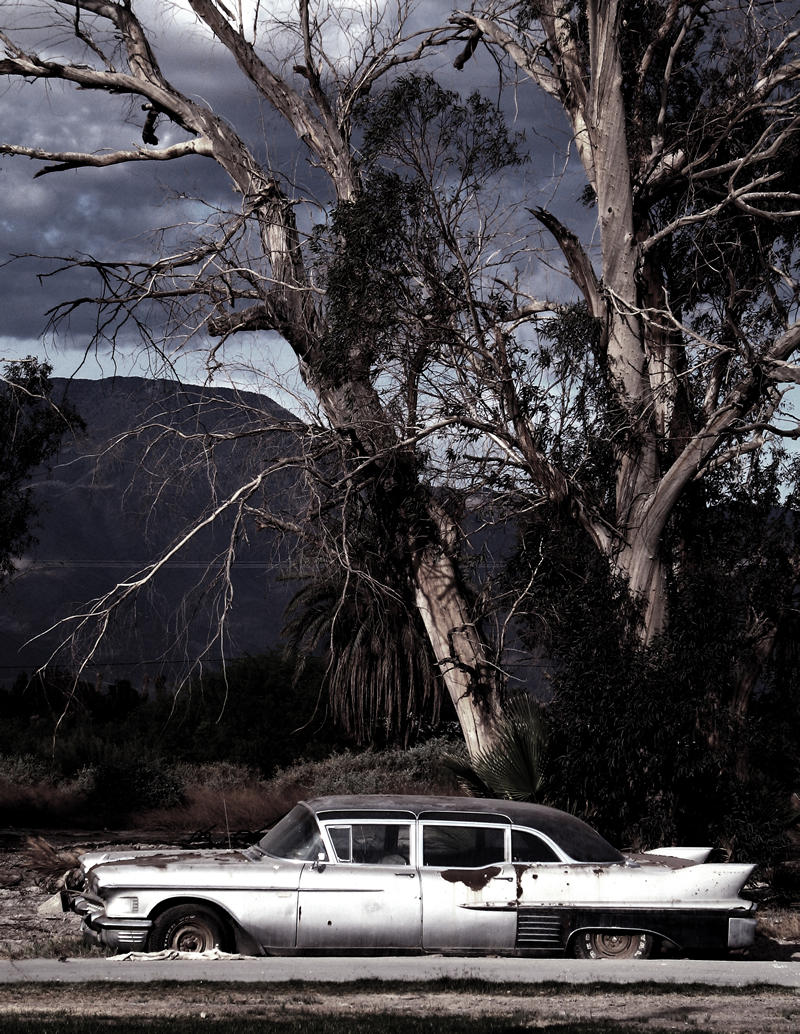 old car and tree; click for previous post