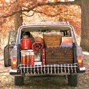 vintage car_road trip