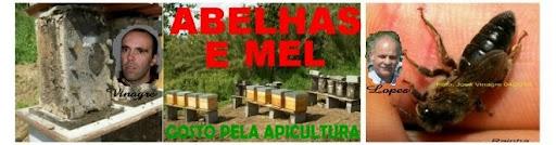 ABELHAS E MEL