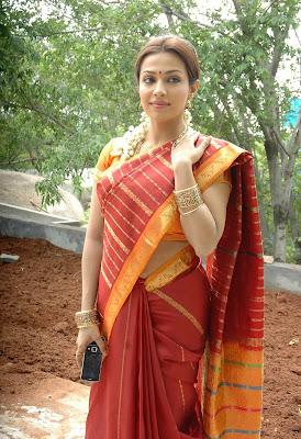 Asha Saini In Saree Navel Queens