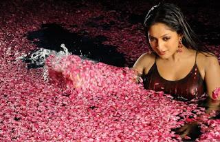 Sheela Malayalam Actress Hot Navel Queens