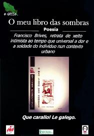 cartel campaña animacion a la lectura del gallego
