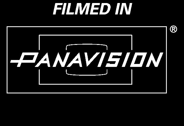 panavision logo car interior design