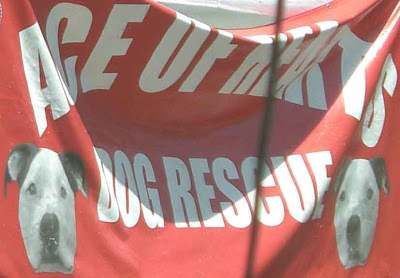 West Hollywood Dog Rescue