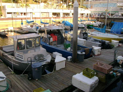 Boats in the Marina - Redondo Beach