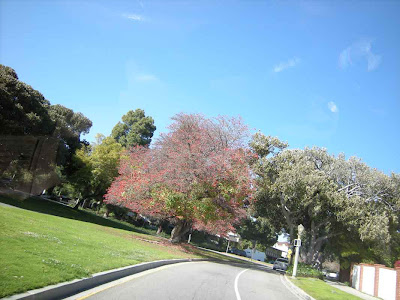 Colorful Entrance to Griffith Park - Griffith Drive