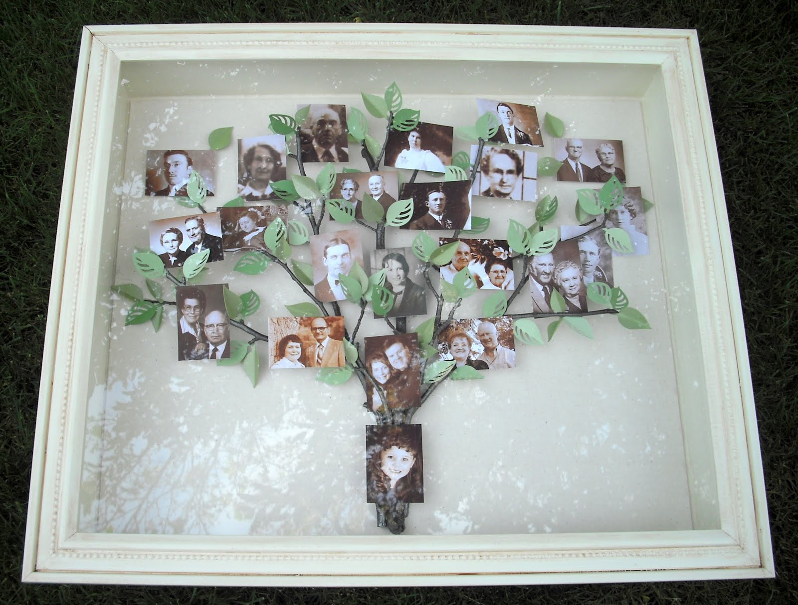 crafty sisters my family tree shadow box. Black Bedroom Furniture Sets. Home Design Ideas