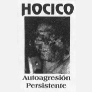 mega post Hocico Portada